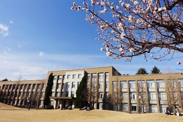 山本さんが4月から通うリベラルアーツの ICU